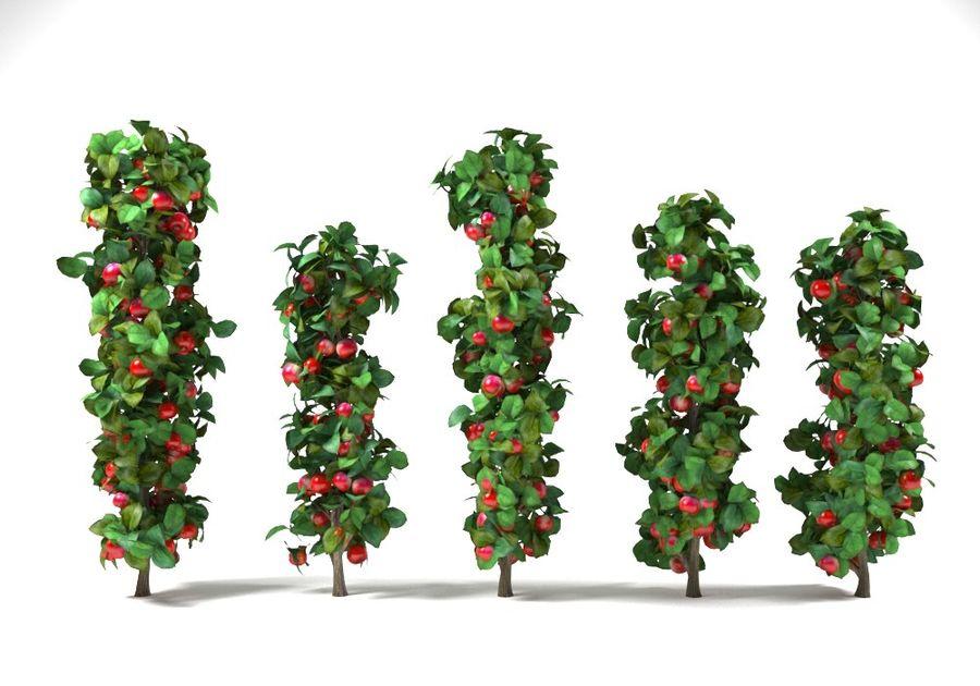 column apple tree set malus royalty-free 3d model - Preview no. 1