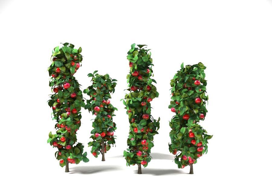 column apple tree set malus royalty-free 3d model - Preview no. 3
