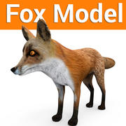 Fox low poly game ready model 3d model
