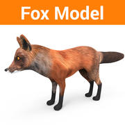 Fox låg poly spel redo 3d model
