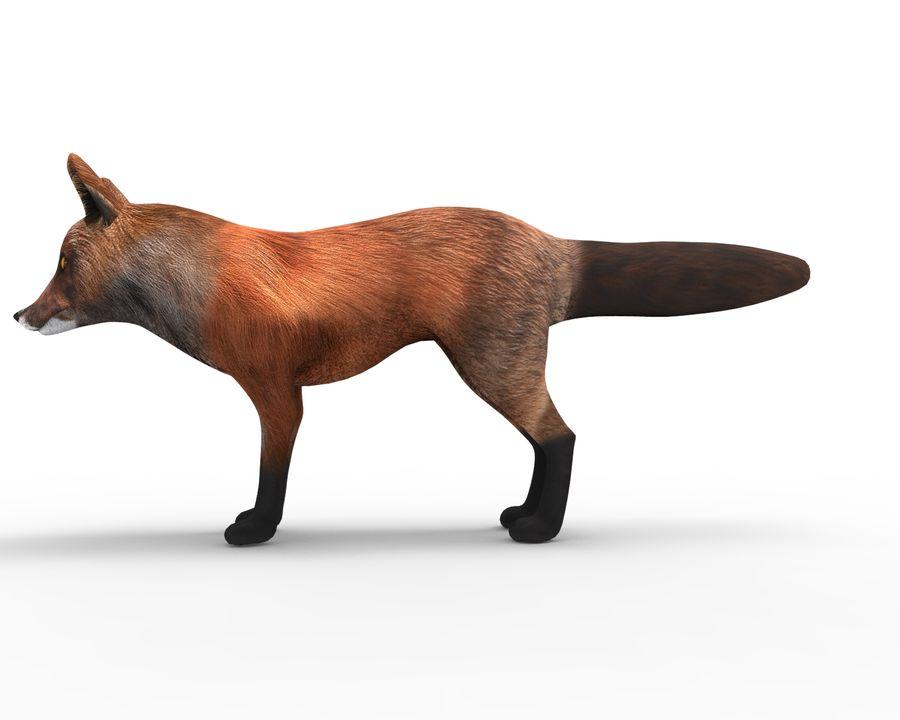 Fox låg poly spel redo royalty-free 3d model - Preview no. 7