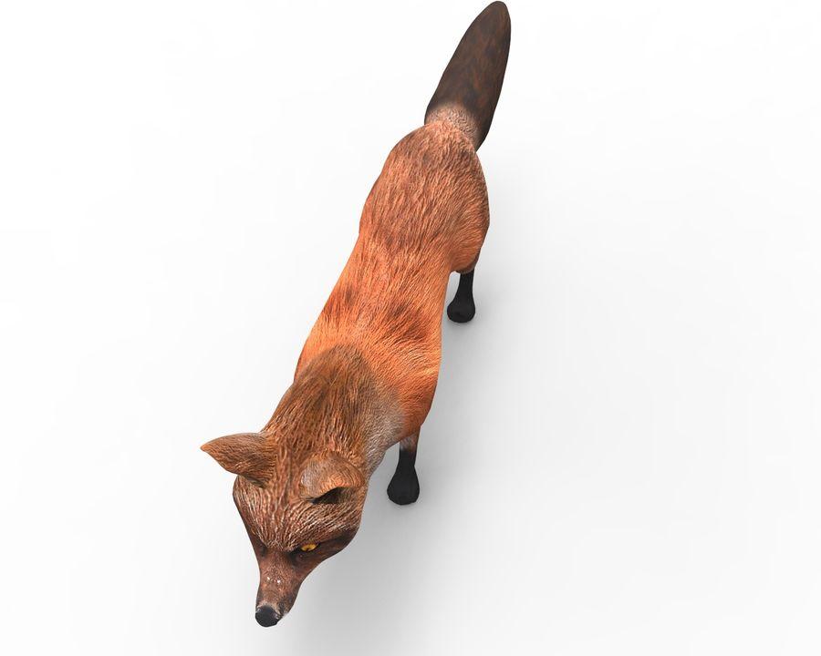 Fox låg poly spel redo royalty-free 3d model - Preview no. 9