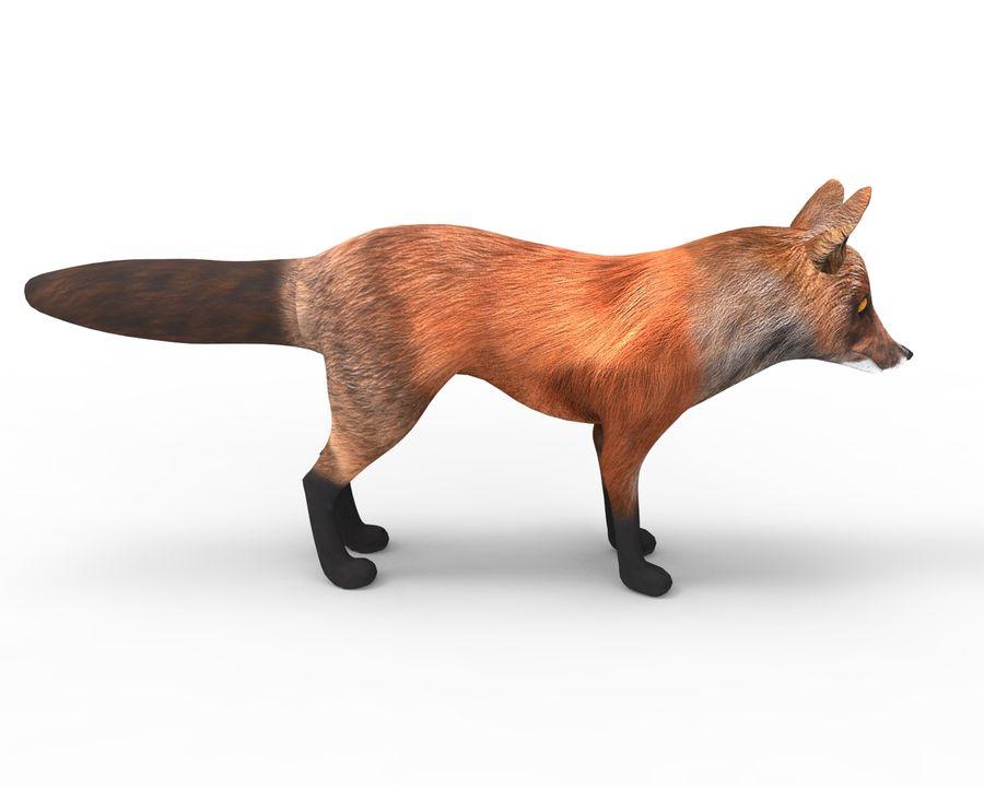 Fox låg poly spel redo royalty-free 3d model - Preview no. 4