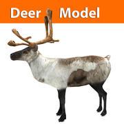 reindeer low poly model 3d model