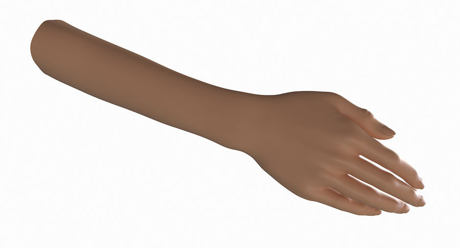 Female Arm A (Pose B) royalty-free 3d model - Preview no. 5