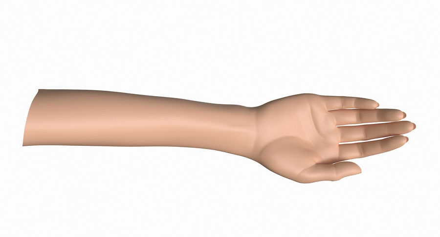 Female Arm A (Pose B) royalty-free 3d model - Preview no. 17