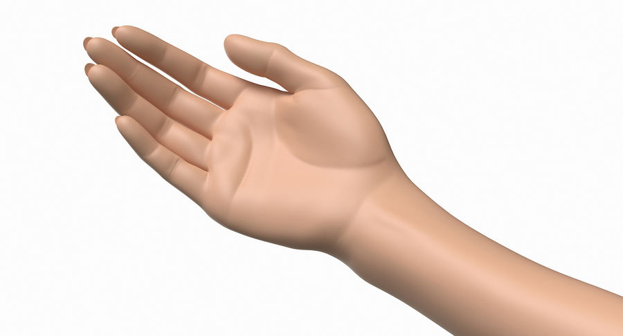 Female Arm A (Pose B) royalty-free 3d model - Preview no. 13