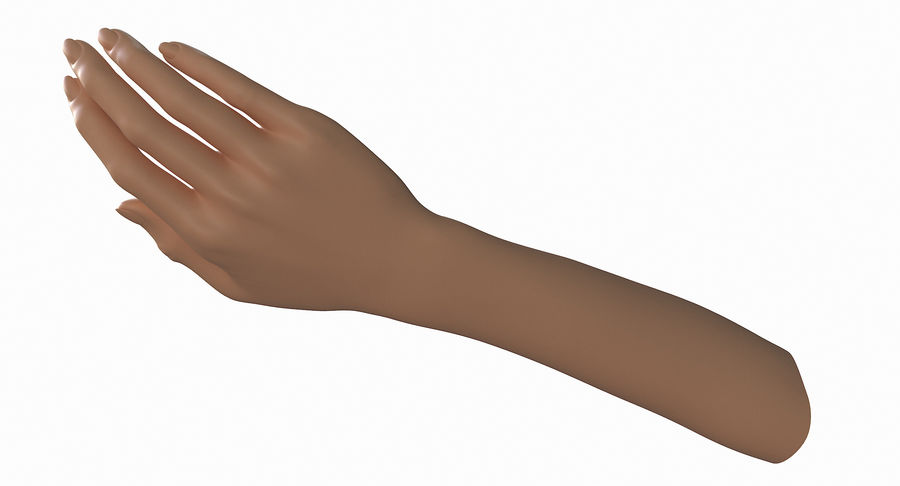 Female Arm A (Pose B) royalty-free 3d model - Preview no. 11