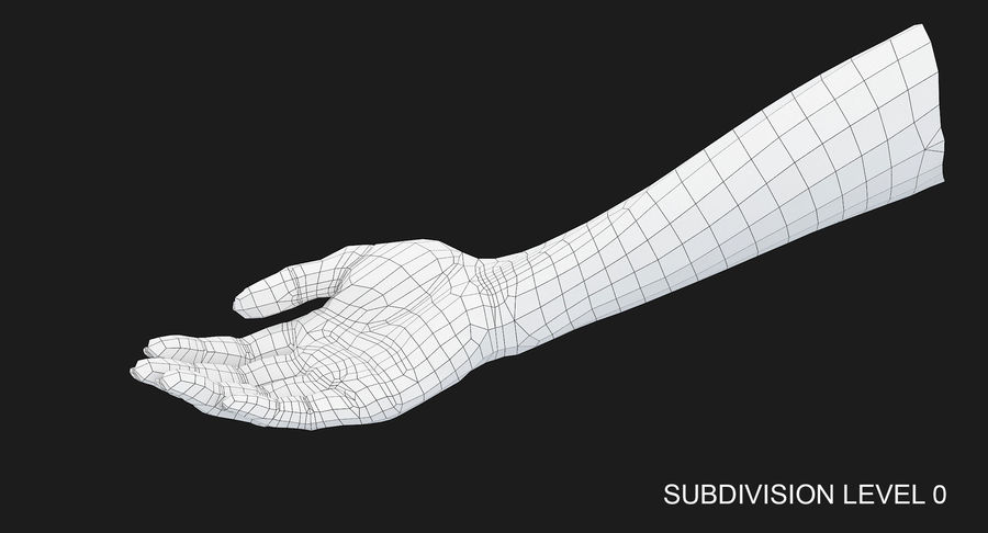 Female Arm A (Pose B) royalty-free 3d model - Preview no. 19