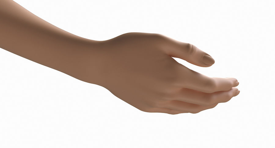 Female Arm A (Pose B) royalty-free 3d model - Preview no. 15