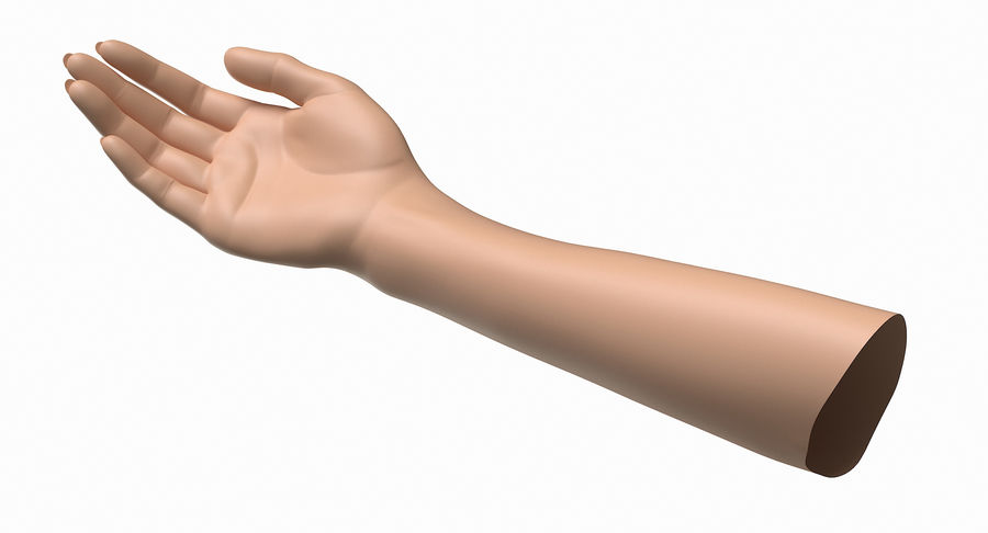 Female Arm A (Pose B) royalty-free 3d model - Preview no. 3