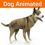 Dog animated(1) 3d model
