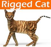 kot leśny olinowany 3d model