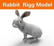 兔装 3d model