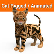 cute cat rigged animated(2) 3d model