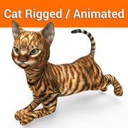 cute cat rigged animation 3d model