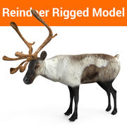 Modell mit Rentier-Takelage 3d model