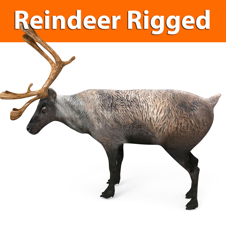Modell mit Rentier-Takelage royalty-free 3d model - Preview no. 1