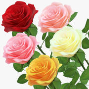 Rose 5 Color modelo 3d