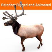 Modelo animado de renos aparejados modelo 3d