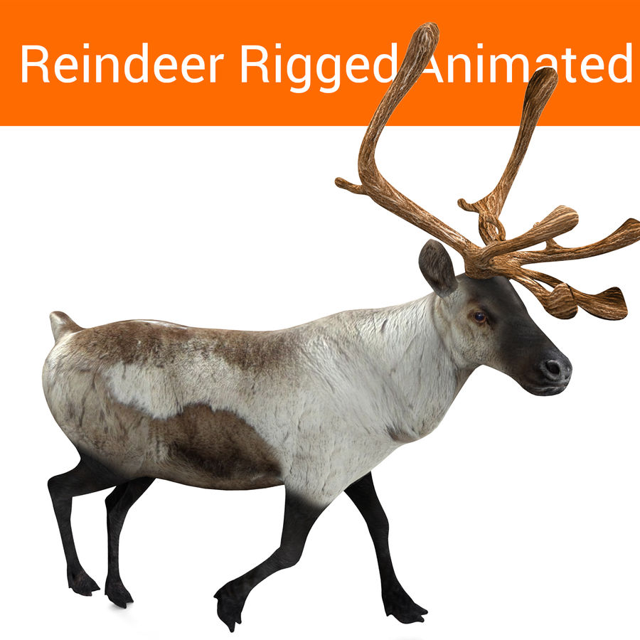 Rentier manipuliert animiert royalty-free 3d model - Preview no. 1