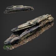 3D escaneado naturaleza bosque cosas 009 modelo 3d