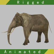 Elephant Rigged Animated 3d model