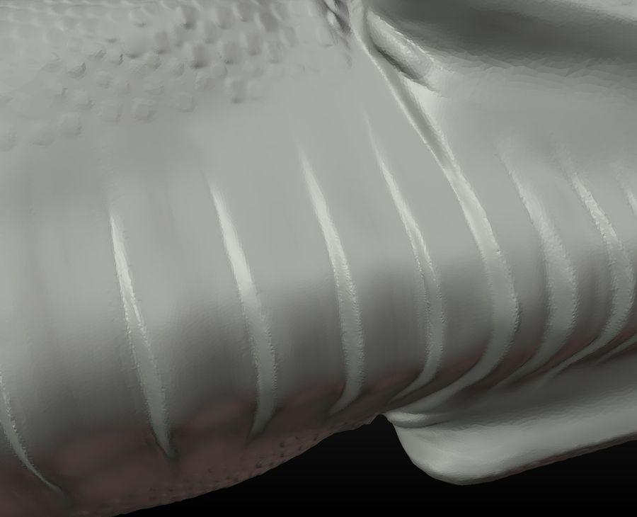 Głowa smoka royalty-free 3d model - Preview no. 14