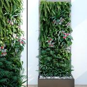 Вертикальный сад 3d model