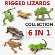 Rigged Lizards 3D Models Collection 2 3d model