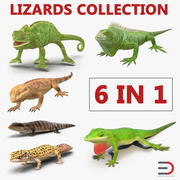 Lizards Collection 2 3d model