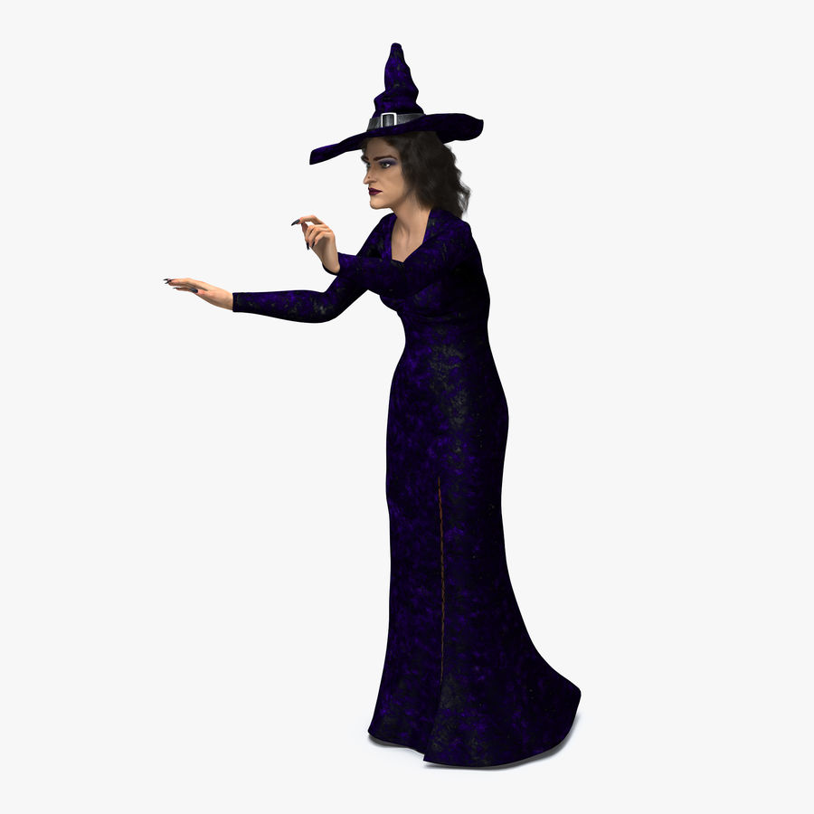 Witch Woman Rigged royalty-free 3d model - Preview no. 1