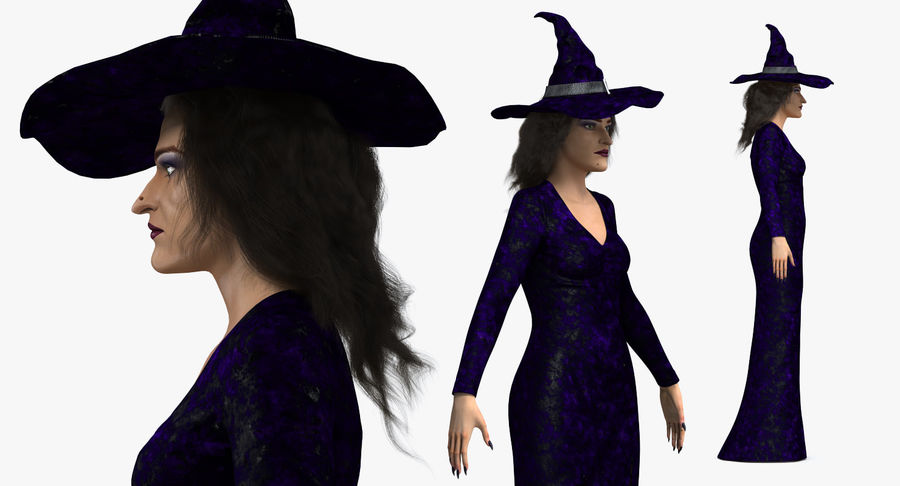 Witch Woman Rigged royalty-free 3d model - Preview no. 8