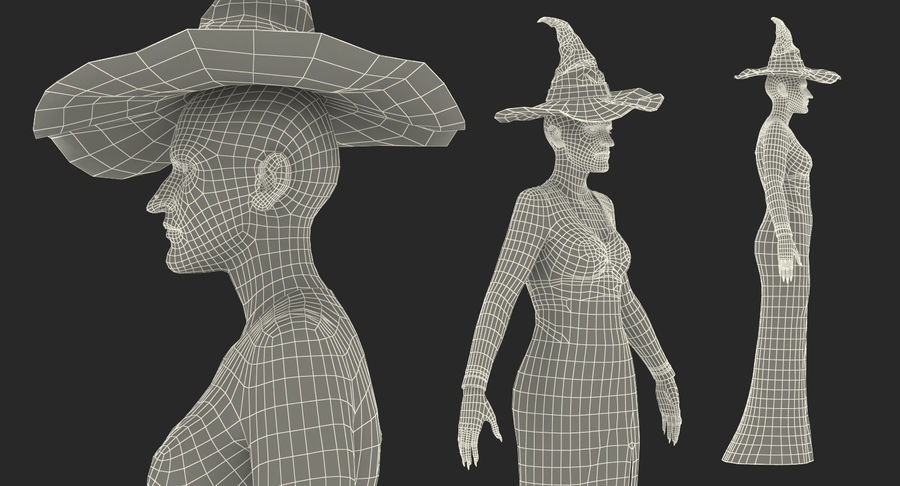 Witch Woman Rigged royalty-free 3d model - Preview no. 20