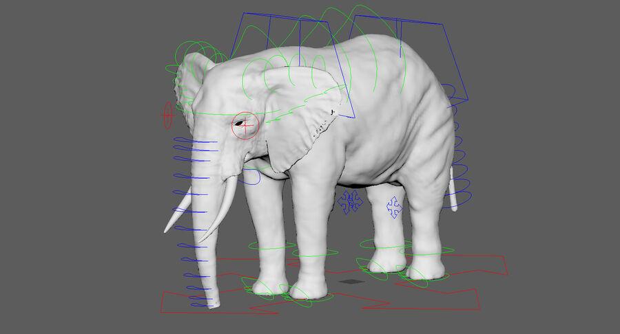Éléphant (gréé) royalty-free 3d model - Preview no. 30