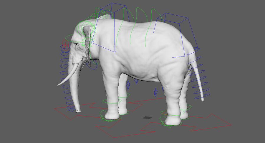 Éléphant (gréé) royalty-free 3d model - Preview no. 27
