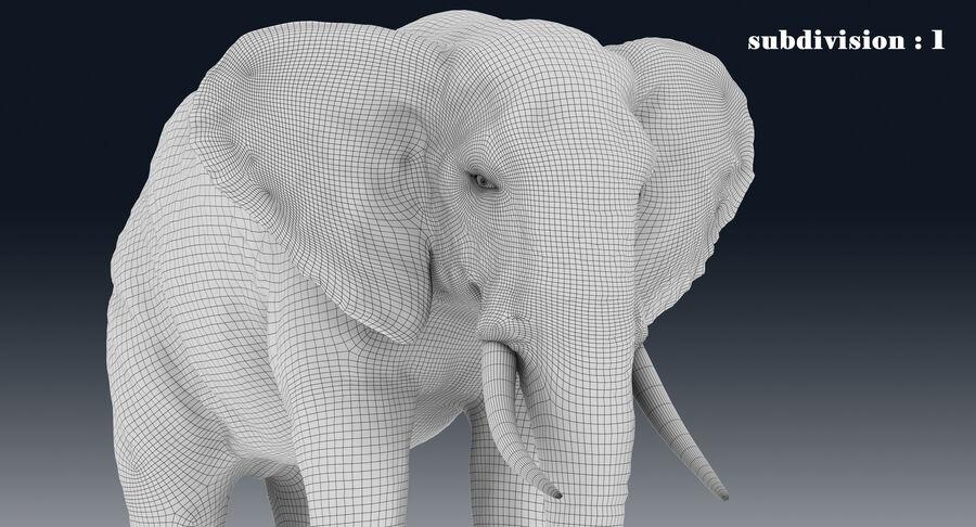 Éléphant (gréé) royalty-free 3d model - Preview no. 26