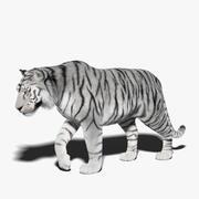 Tigre Branco (Pele) Rigged 3d model