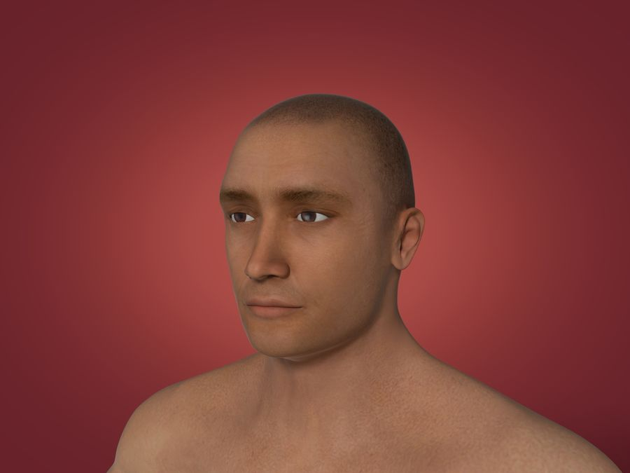 Man 3 Textures royalty-free 3d model - Preview no. 3