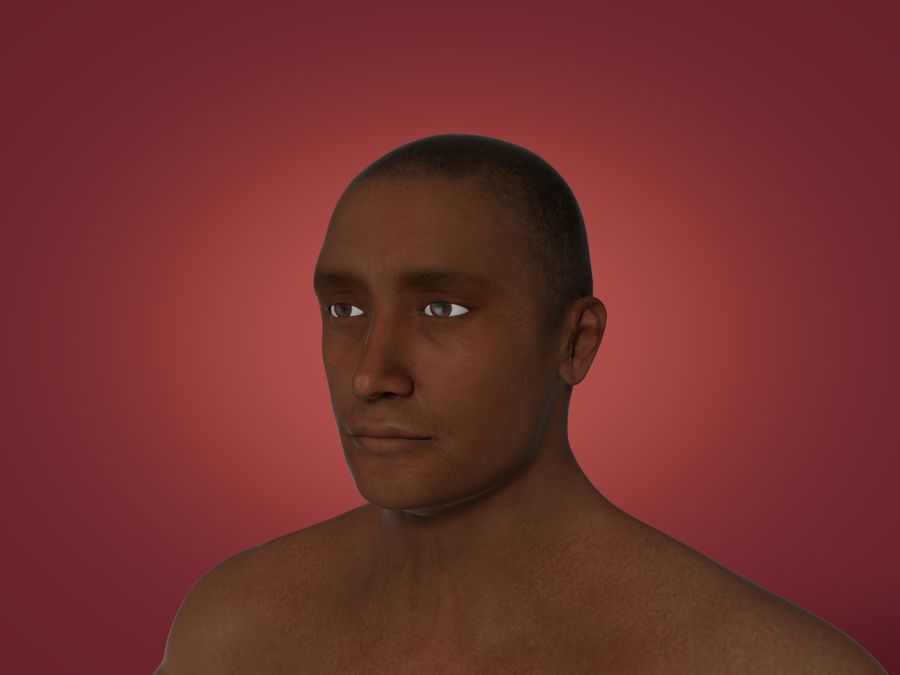 Man 3 Textures royalty-free 3d model - Preview no. 2