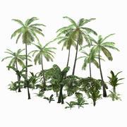 Vegetação Tropical Low-poly 3d model