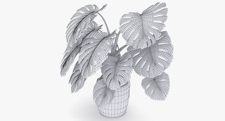 Monstera Deliciosa Plant In Pot royalty-free 3d model - Preview no. 21