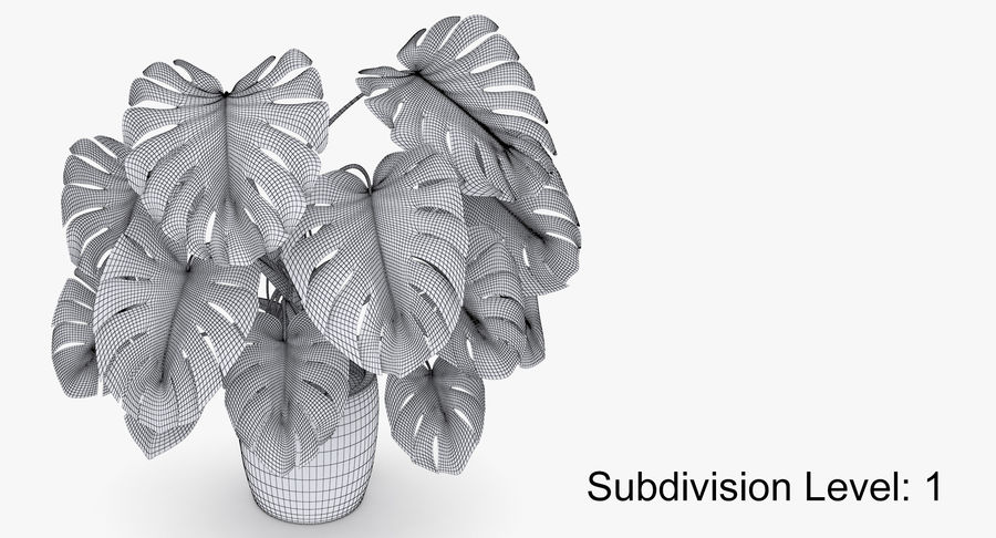 Monstera Deliciosa Plant In Pot royalty-free 3d model - Preview no. 40
