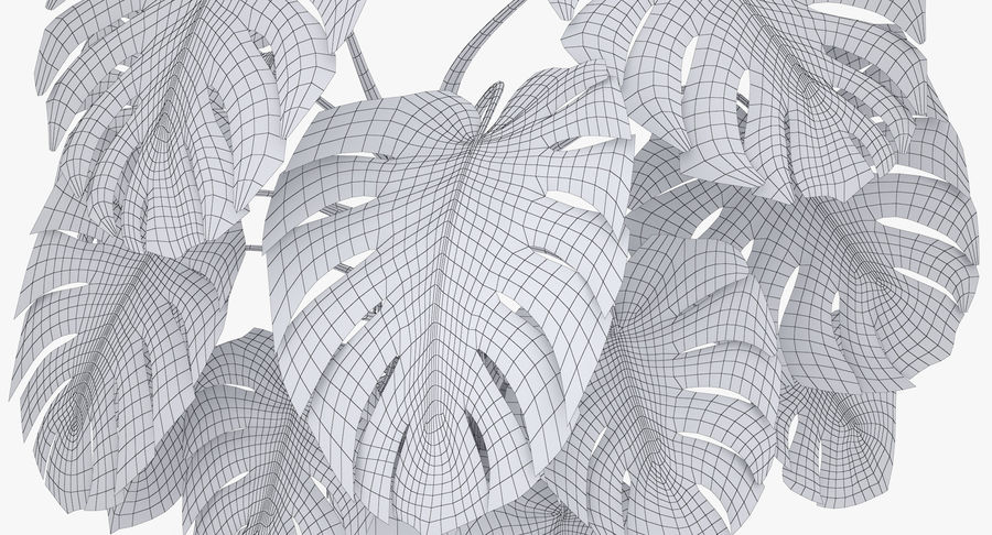 Monstera Deliciosa Plant In Pot royalty-free 3d model - Preview no. 18