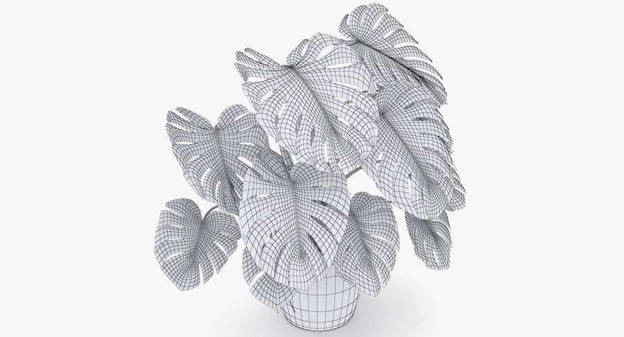 Monstera Deliciosa Plant In Pot royalty-free 3d model - Preview no. 8