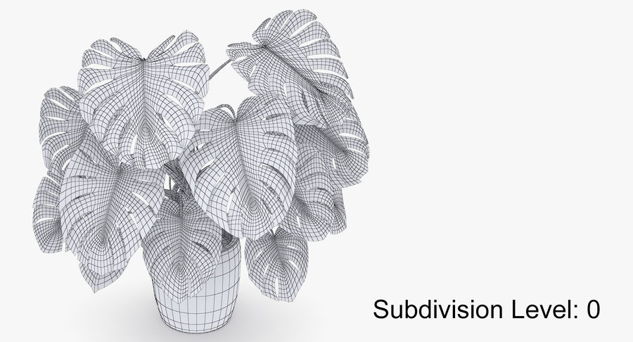 Monstera Deliciosa Plant In Pot royalty-free 3d model - Preview no. 38