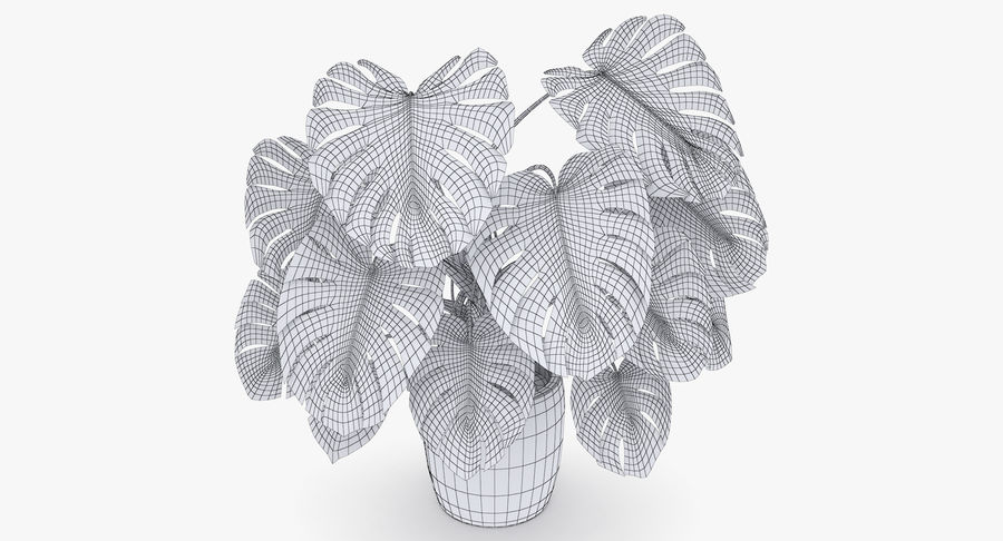 Monstera Deliciosa Plant In Pot royalty-free 3d model - Preview no. 6