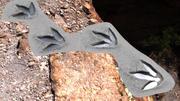 T.rex Tracks Element 3d model