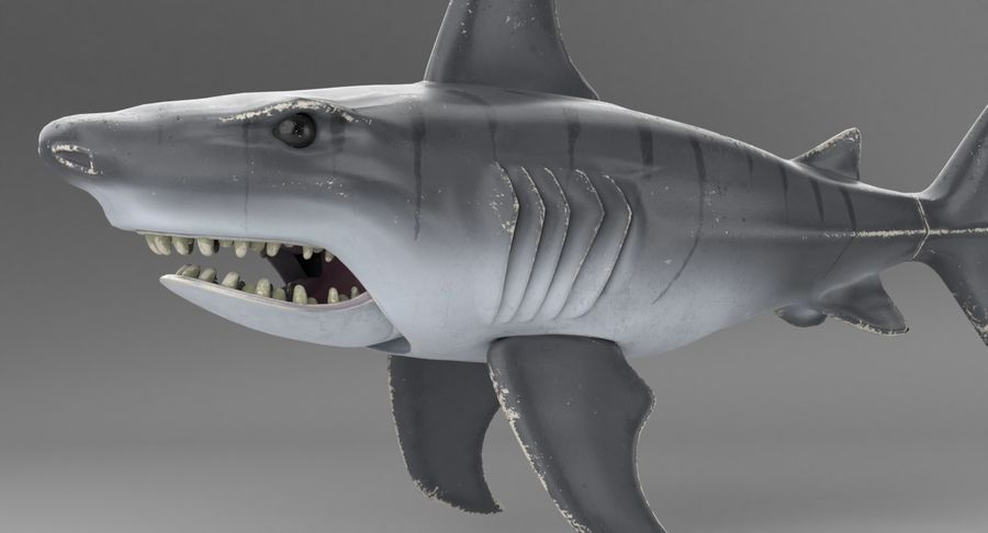 Toy Shark royalty-free 3d model - Preview no. 16