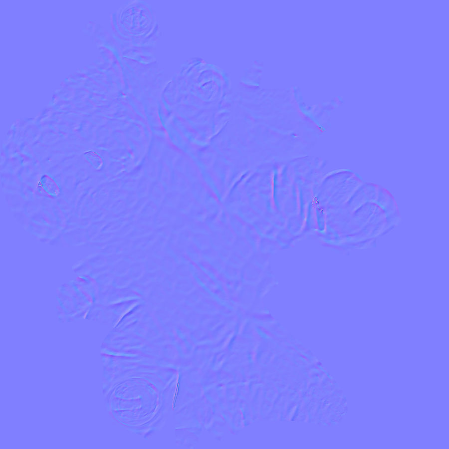 Doldurulmuş Hayvan Dinozor - Taranan royalty-free 3d model - Preview no. 11